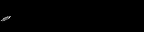 Lily Ente Logo